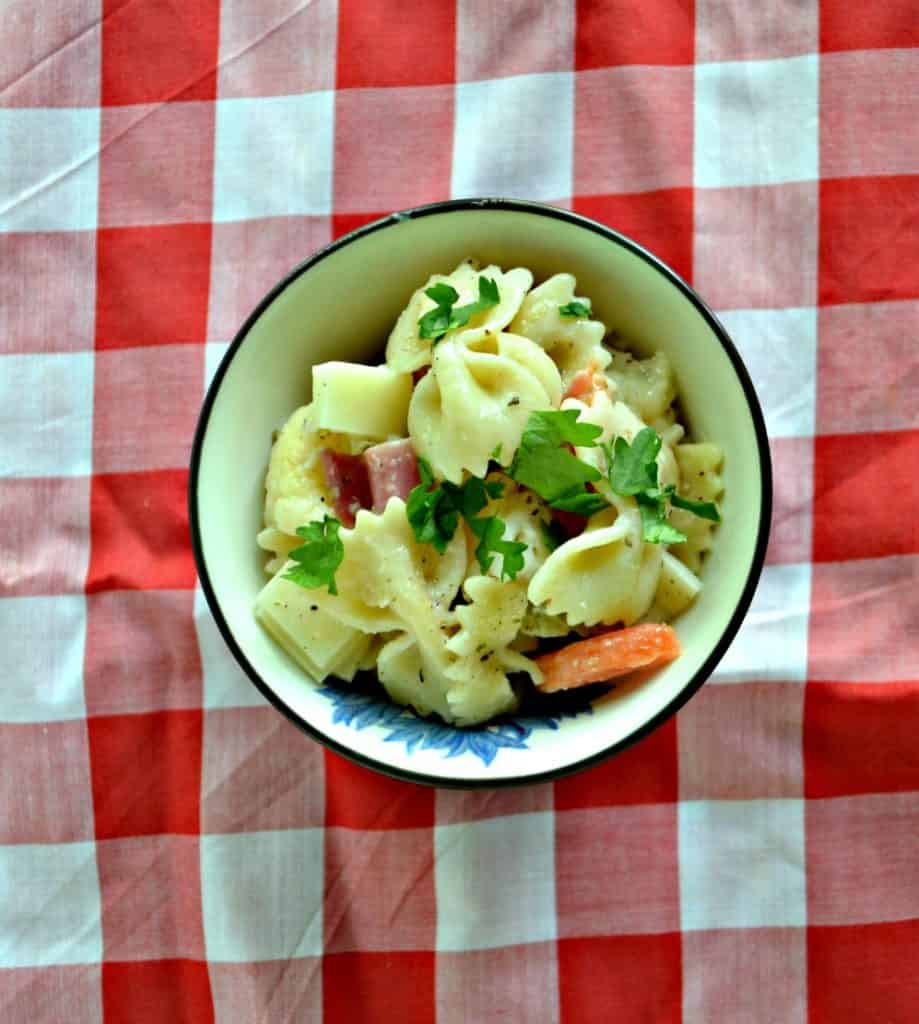 A bowl of bow tie pasta with fresh herbs, deli meats, and carrots on a red and white checked background
