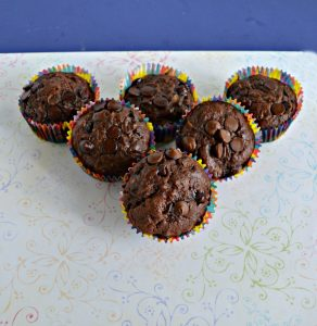Sourdough Double Chocolate Zucchini Muffins