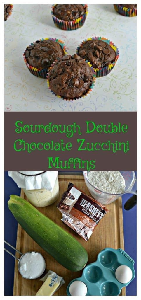 Pin Image: Three chocolate muffins in a triangle formation with one in the background on a white backdrop, Text Overlay, a cutting board lined with a jar of sourdough starter, a cup of flour, a bag of chocolate chips, and a large zucchini.