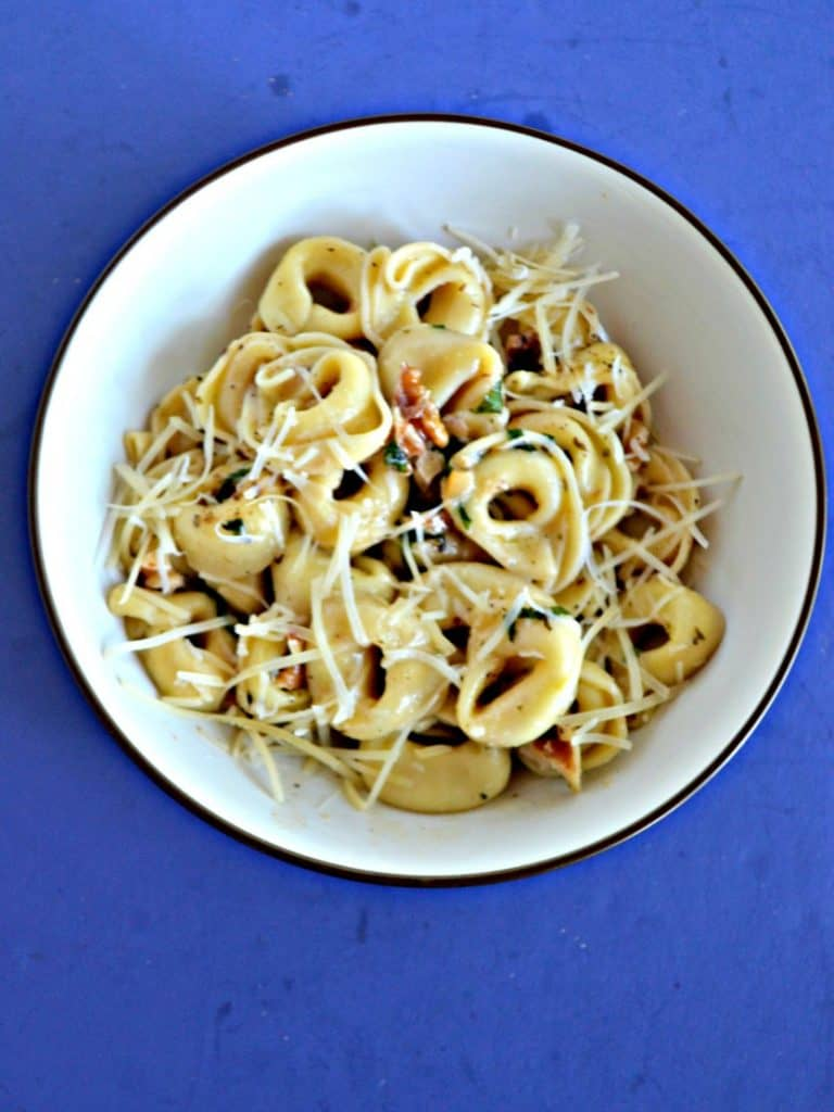 A bowl of tortellini studded with walnuts and parmesan on a blue background.