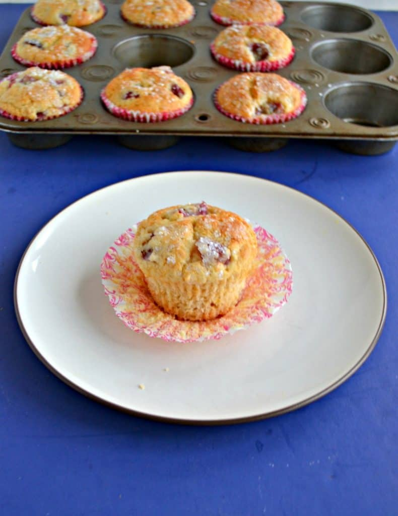 A white dessert plate with a golden brown muffin studded with purple grapes sitting on a red and white liner in the middle of it with a muffin tins filled with more muffins behind it on a blue background.