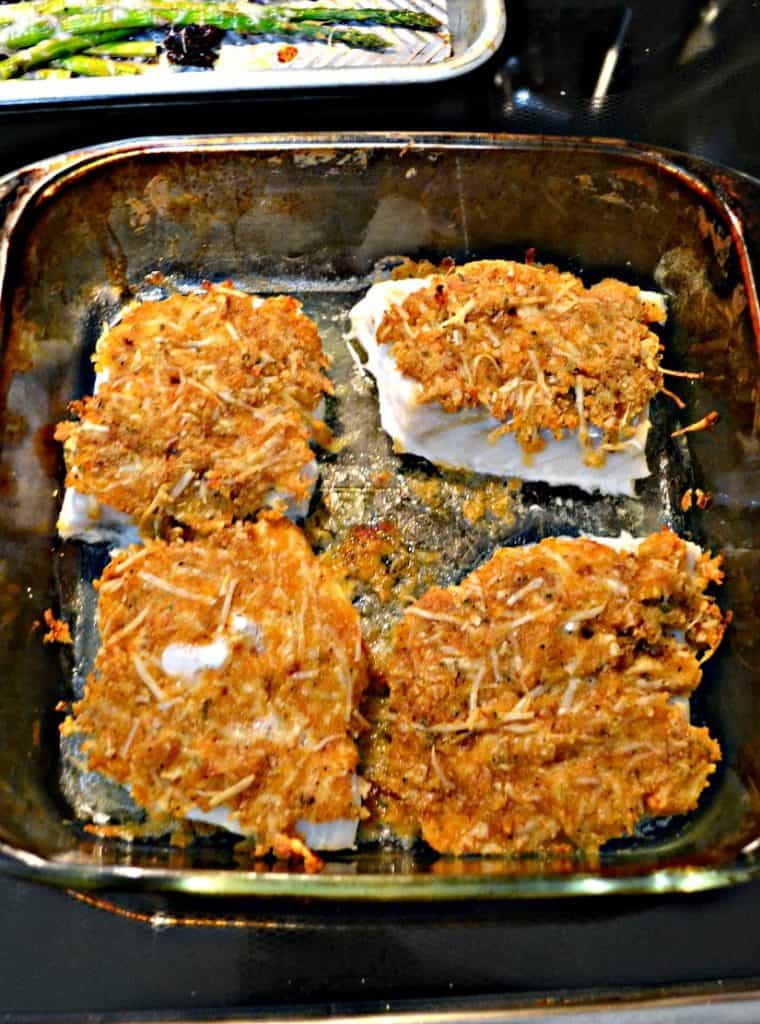 A baking dish with four fish filets with golden brown topping on each.