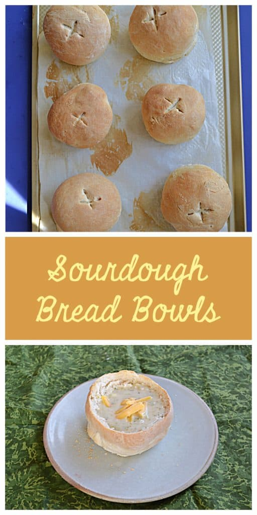 Pin Image: A cookie sheet topped with six golden brown bread bowls, text, A plate topped with a hollwed out bread bowl filled with creamy broccoli cheese soup and sprinkled with cheddar cheese.