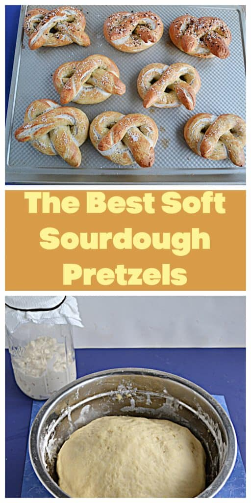 Pin Image: A baking sheet with 8 golden brown soft pretzels on it, text, a bowl with rising dough in it with a jar of sourdough starter behind it.