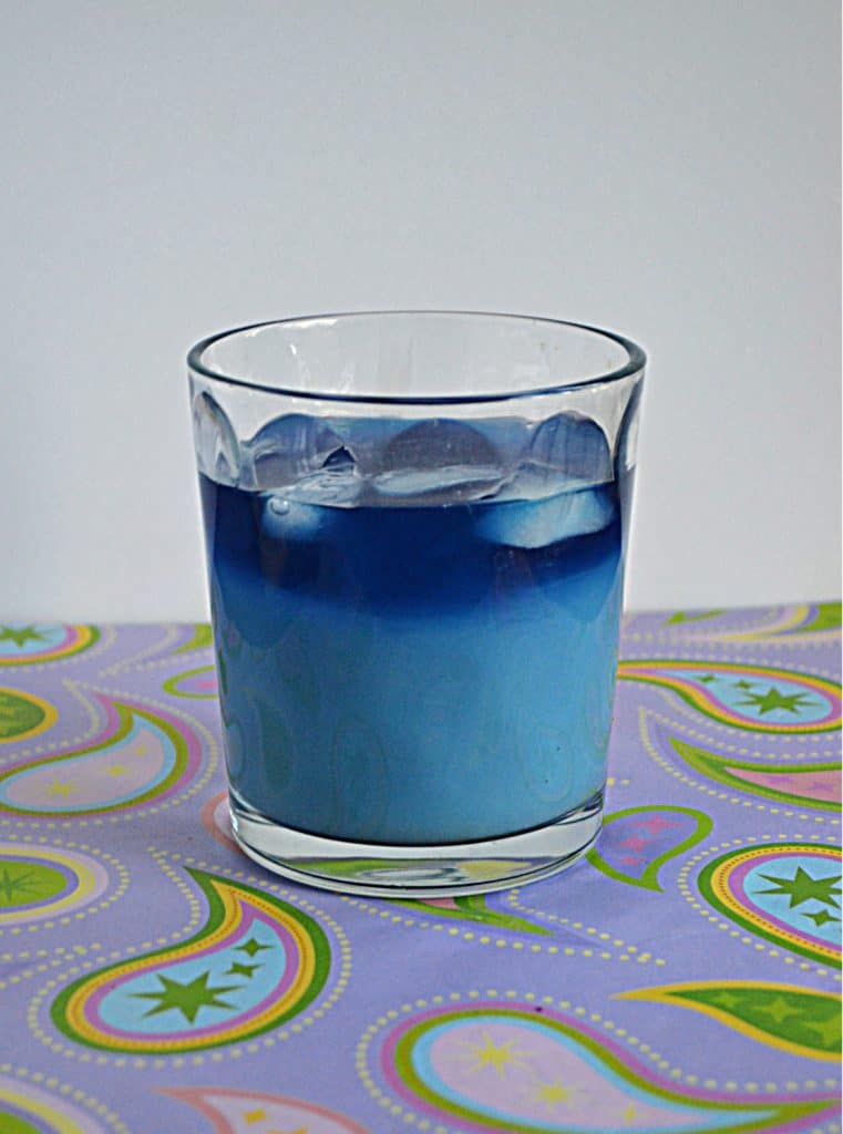 A glass of Butterfly Pea Flower Iced Tea Latte (light blue on the bottom, dark blue on the top)